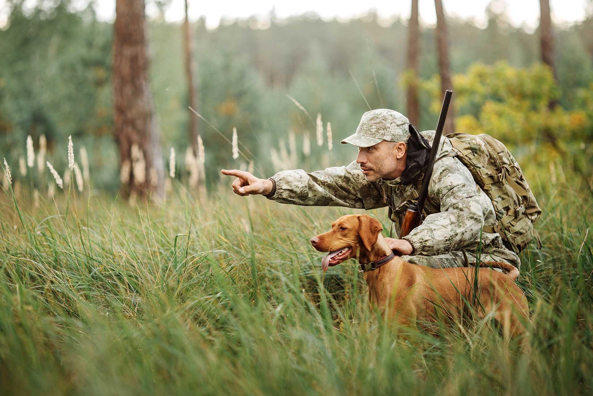 Hunting Violations